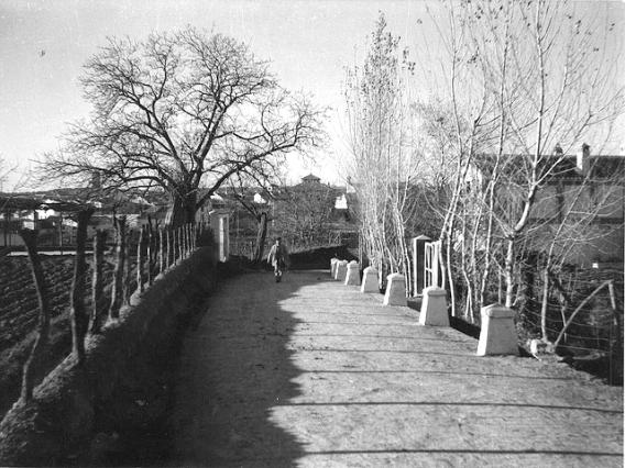 cementerio-8819