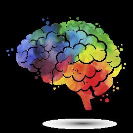 cerebro_color_optimizado.png