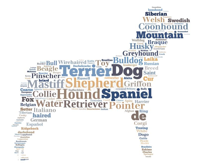 razas-de-perro-crea-nube-palabras-en-forma-concepto-fondo-cachorro-171422121