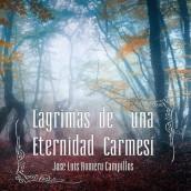 LÁGRIMAS DE UNA ETERNIDAD CARMENSÍ
